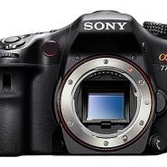 Digitale Spiegelreflexkameras für Einsteiger und Profis